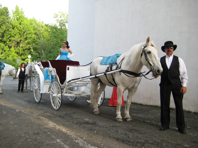 http://www.echolakestables.com/images/carriage/IMG_0481.jpg