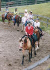 http://www.echolakestables.com/images/thumbnails/2003aug01_small.jpg